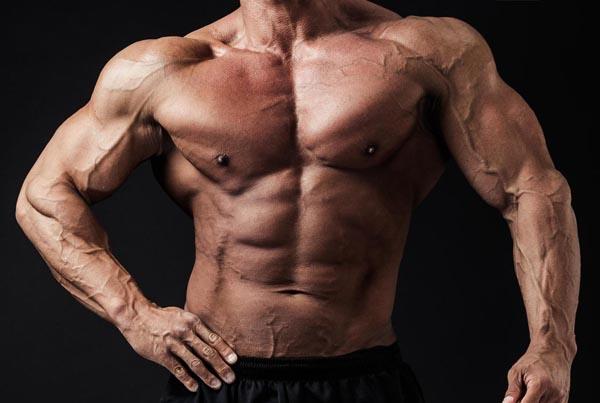 割れた腹筋を目指せ! 腹筋トレーニング動画