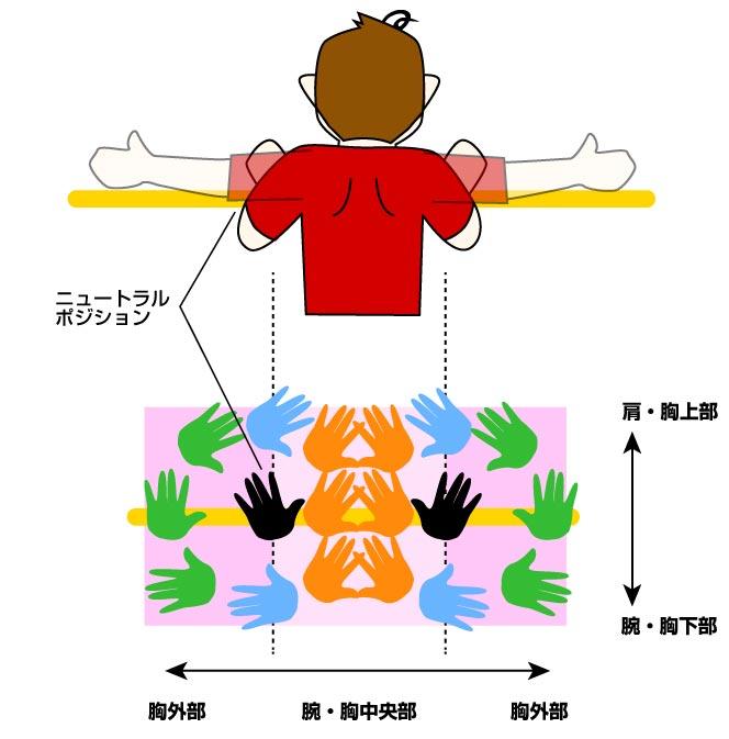 腕立て伏せ(プッシュアップ)の負荷のかけ方と効果