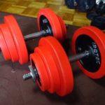IROTEC(アイロテック) ラバー ダンベル 40kgセット(片手20kg×2個)