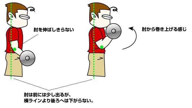 上腕二頭筋の基本的な鍛え方
