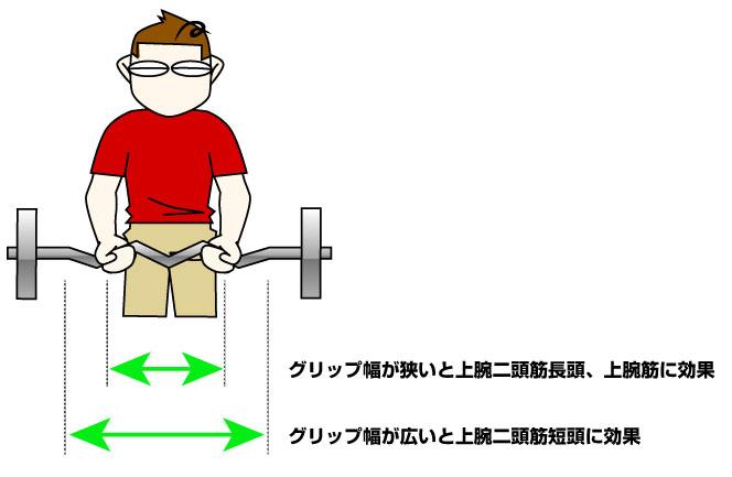 Wバーを使って上腕二頭筋の長頭、短頭を鍛える