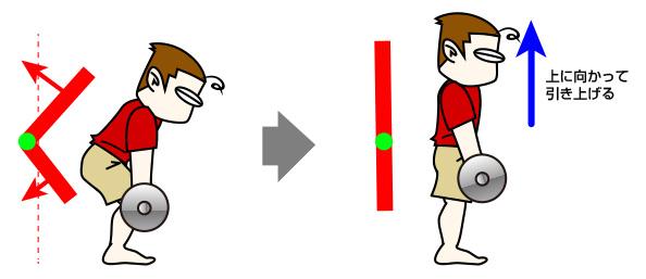 図、デッドリフト:腰から上。お尻、腰、背筋をメインで意識する場合