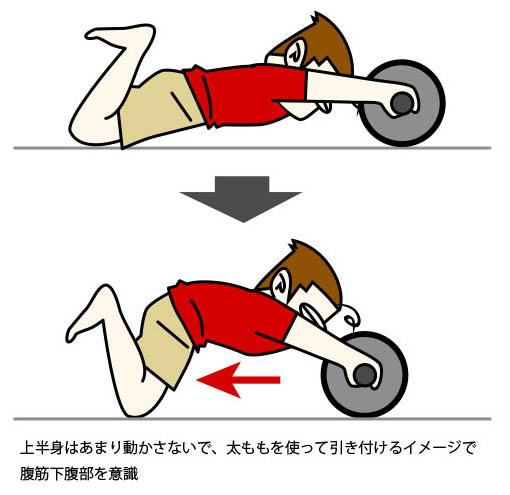 図 腹筋ローラーで下腹部を鍛える