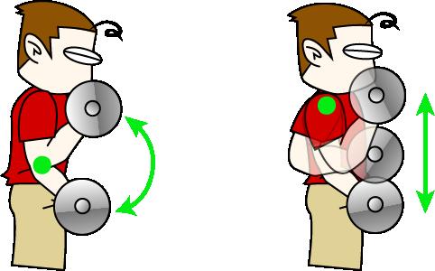 アームカールの2種類