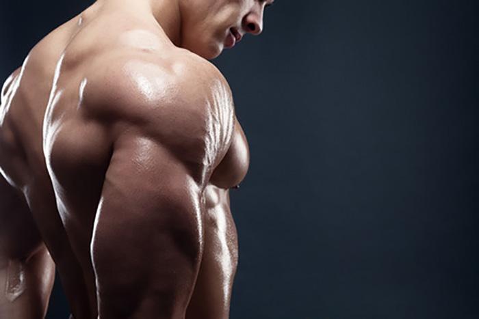 肩トレ大復習!! 筋肥大を目指す肩のダンベルトレーニングメニューを見直し!!
