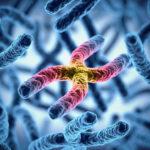 筋肉がつきにくい、筋トレ効果が出ないのは体質遺伝、遺伝子が原因ってホント?