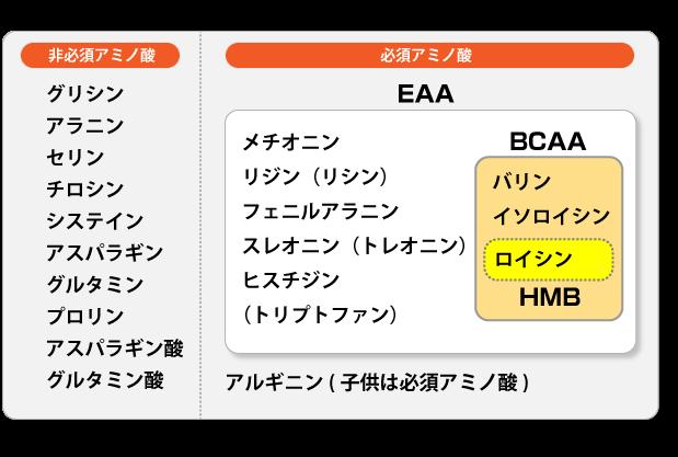 EAAの構成図