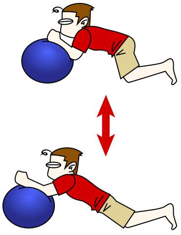 腹筋トレーニング7 バランスボール+ボールロールアウト【腹筋上部・下部】