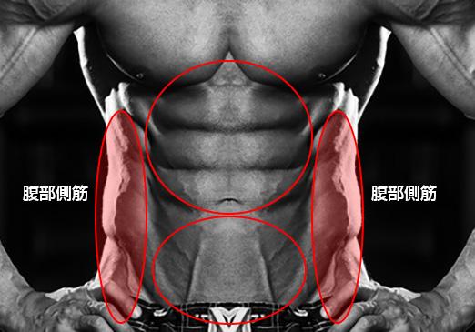 初心者おすすめ、腹部側筋、外腹斜筋・内腹斜筋、金魚筋を短期間で割るトレーニングメニュー