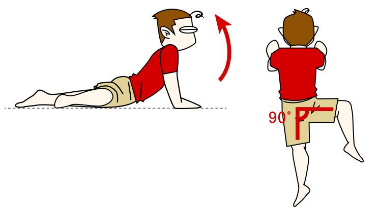 腹筋ストレッチ3 腹横筋・腹斜筋をストレッチ