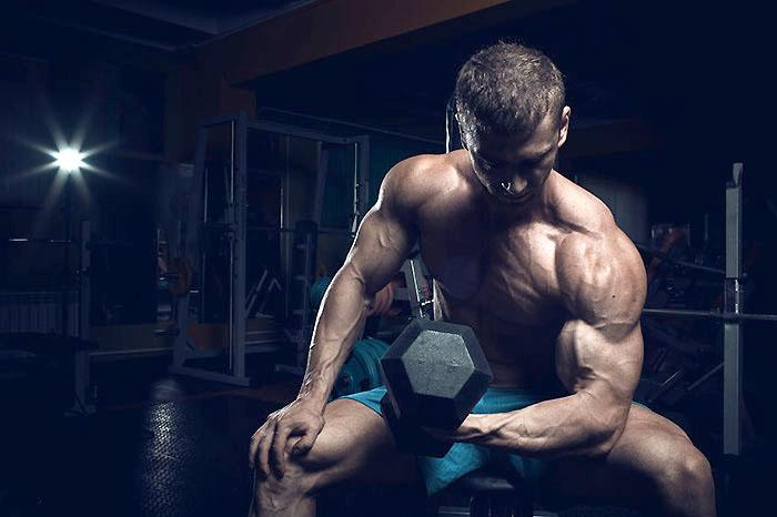 上腕二頭筋の長頭と短頭の鍛え方の違い