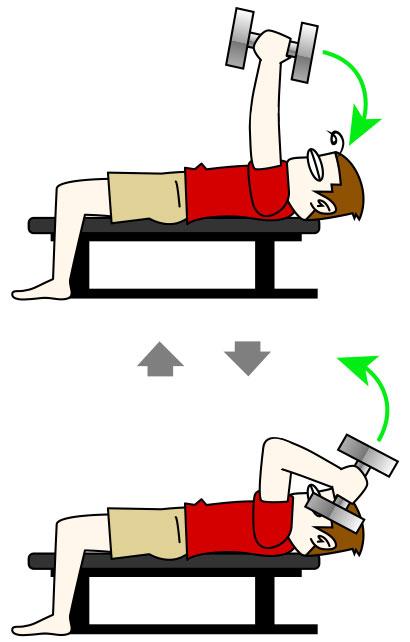 上腕三頭筋|スカルクラッシャートレーニング