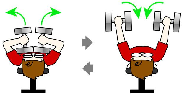 上腕三頭筋|テイトプレストレーニング