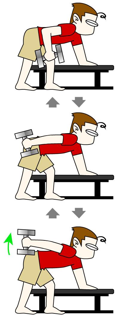 上腕三頭筋|キックバックトレーニング