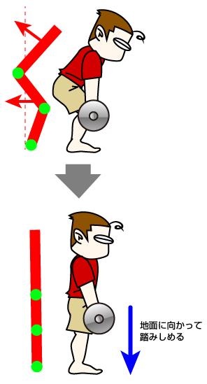 デッドリフト:腰から下。お尻、ハムストリングス、脹脛をメインで意識する場合