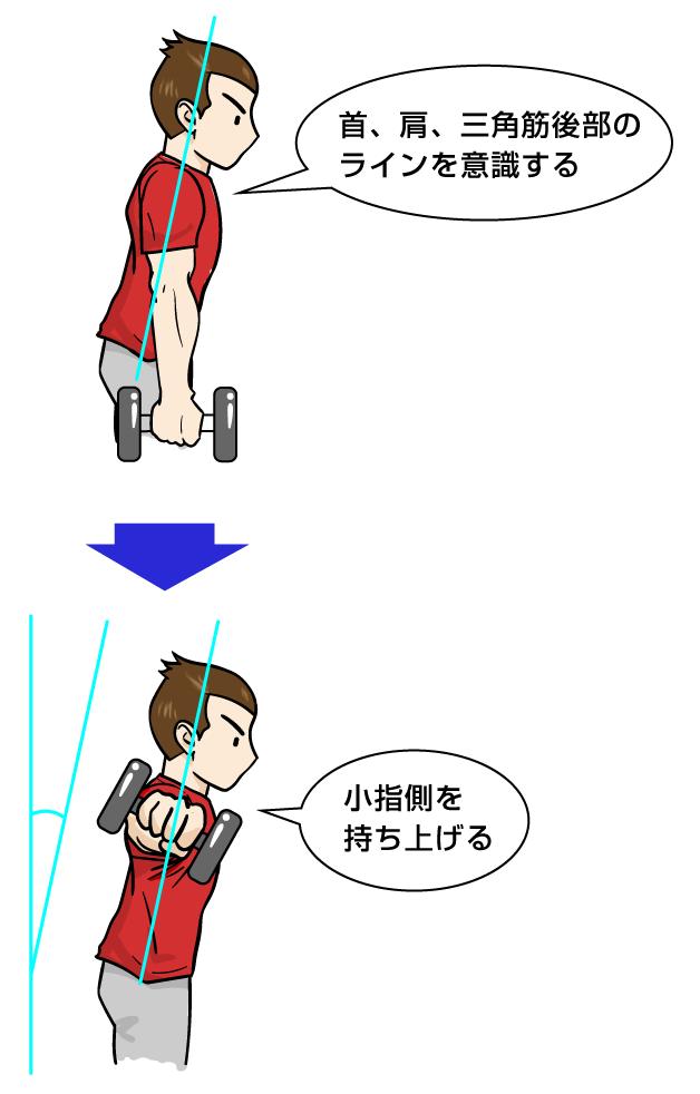 三角筋筋トレ:ダンベル サイドレイズ・バリエーション1:マンガイラストで筋トレ解説