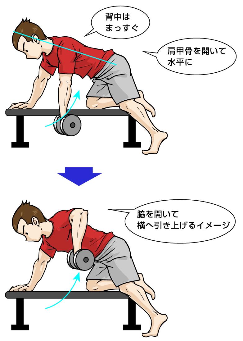 三角筋筋トレ:ダンベル ワンハンドローイング・バリエーション:マンガイラストで筋トレ解説