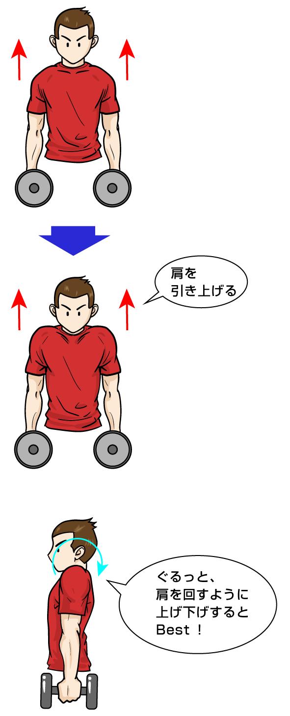 三角筋筋トレ:ダンベル ショルダーシュラッグ:マンガイラストで筋トレ解説