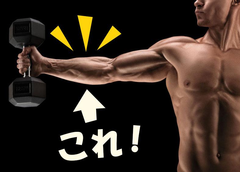 前腕筋・握力・手首を鍛えて腕を太くする! 最強筋トレ器具タイプ別6選!