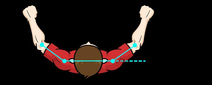 サイドレイズ、三角筋の筋肉の腕の角度:マンガイラストで筋トレ解説